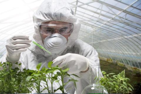 Закон о ГМО остановит развитие изучения природы в Польше