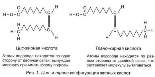 Отличия молекулы транс-жирной кислоты от «обычной» молекулы жирной кислоты
